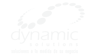 logo_dynamic_solution